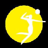 logoslider